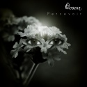 Ocoeur — Percevoir Cover Art