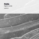 PARA — Digital Crackle Ep Cover Art
