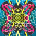 Pan Psychic — We Are Not Who We Are Cover Art