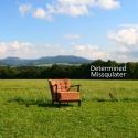 Missqulater — Determined Cover Art