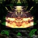 Transient — CHIQUESALUNGA Cover Art