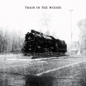 Hank Hobson — Train In The Woods Cover Art