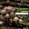 Mr Kaidzu — Mushrooms Cover Art