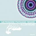 Micronoise Paranoic Sound — Allum Sound Cover Art