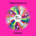 'Various Artists' — Wheel of Fortune # 8 Compilation Cover Art