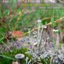 Natural Life Essence — Seeds and Spores Cover Art