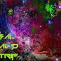 [Heartworm] — Bad Acid Trip Cover Art
