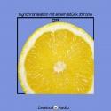DR — Synchronisation mit einem Stück Zitrone Cover Art