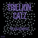 Trillion Catz — The Big Numbers Cover Art