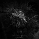 zelde743 — global ep Cover Art