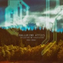 Various Artists — Hallucino Attics (Dissolved Re-constructed 2001-2006) Cover Art