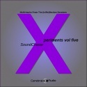 SoundChaser — Xperiments Vol. Five Cover Art