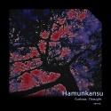 Hamunkansu — Curious Thought EP Cover Art