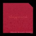 Alejandro Remeseiro Fernández — Playground Cover Art