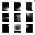 The Murmurous Playground — Somber Fuss Experiments Cover Art