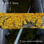 M.A.K.T. Sono — If you were a clarinet Cover Art