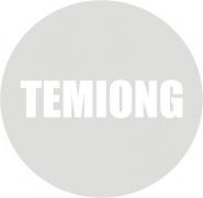 Temiong Recordings Logotype