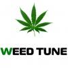 Weed Tune Logotype