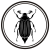 SOLANIC Logotype